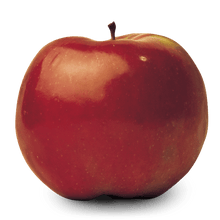 Apple, Spartan (semi-dwarf)