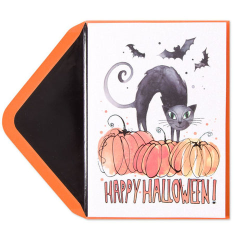 Cat on Pumpkin: PAPYRUS Greeting Card
