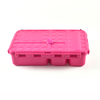Go Green Snack Box: PINK