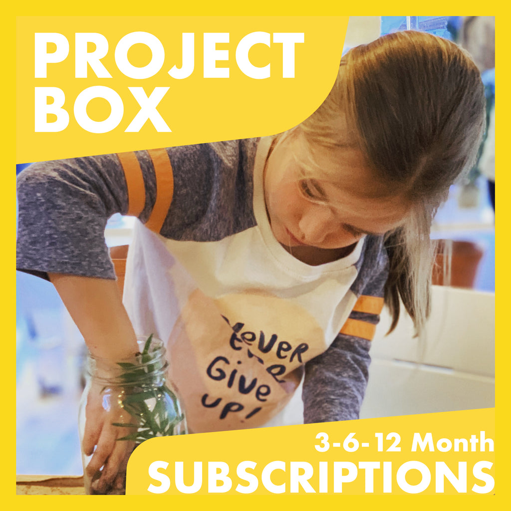 Project Box Subscription