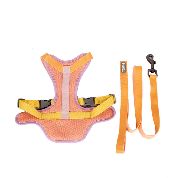 Colourful Pet Harness+ Leash