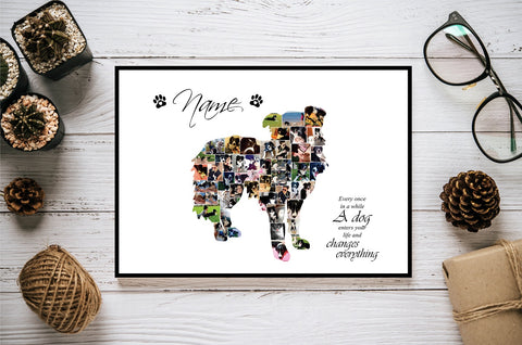 Border Collie Dog Personalised Photo Collage Silhouette- Digital File
