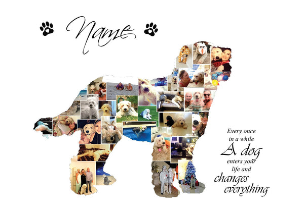 Labradoodle Dog Personalised Photo Collage Silhouette- Digital File