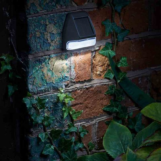 Fence, Wall & Post Light, 3 Lumens