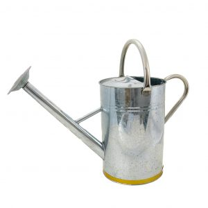 Kent & Stowe 9L Galvanised Metal Watering Can