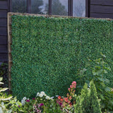 Boxwood Screening Panel 60x40cm