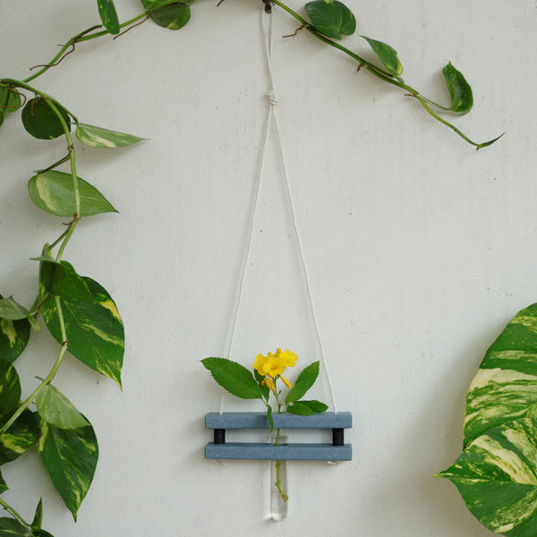 Eco Test tube Wall Hanging Planter