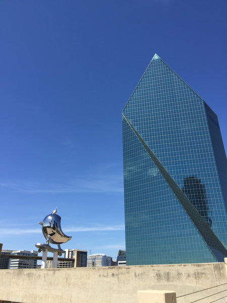 SkaterBIRD Downtown Dallas