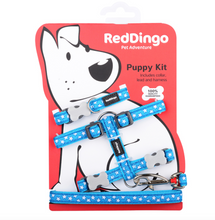 Load image into Gallery viewer, White Star on Turquoise Puppy Pack by Red Dingo