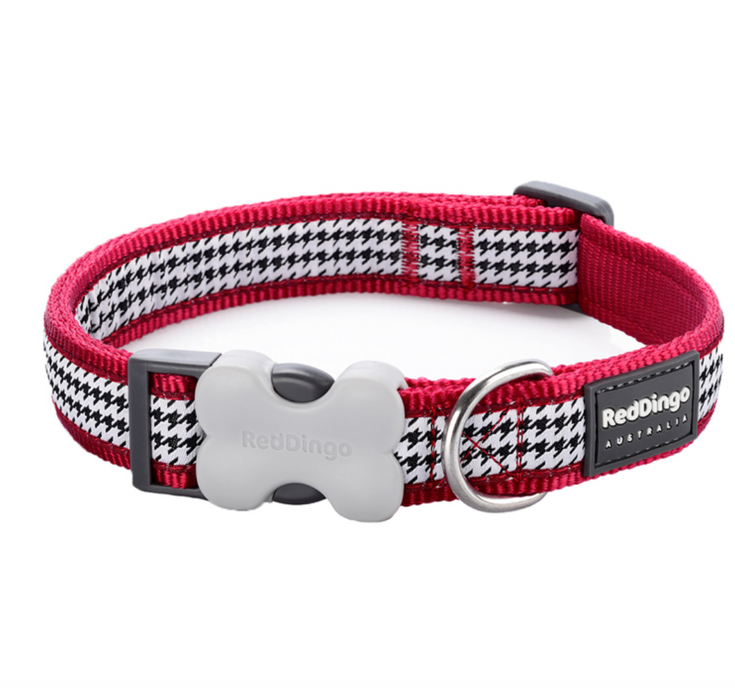 Dogtooth Dog Collar by Red Dingo: Red