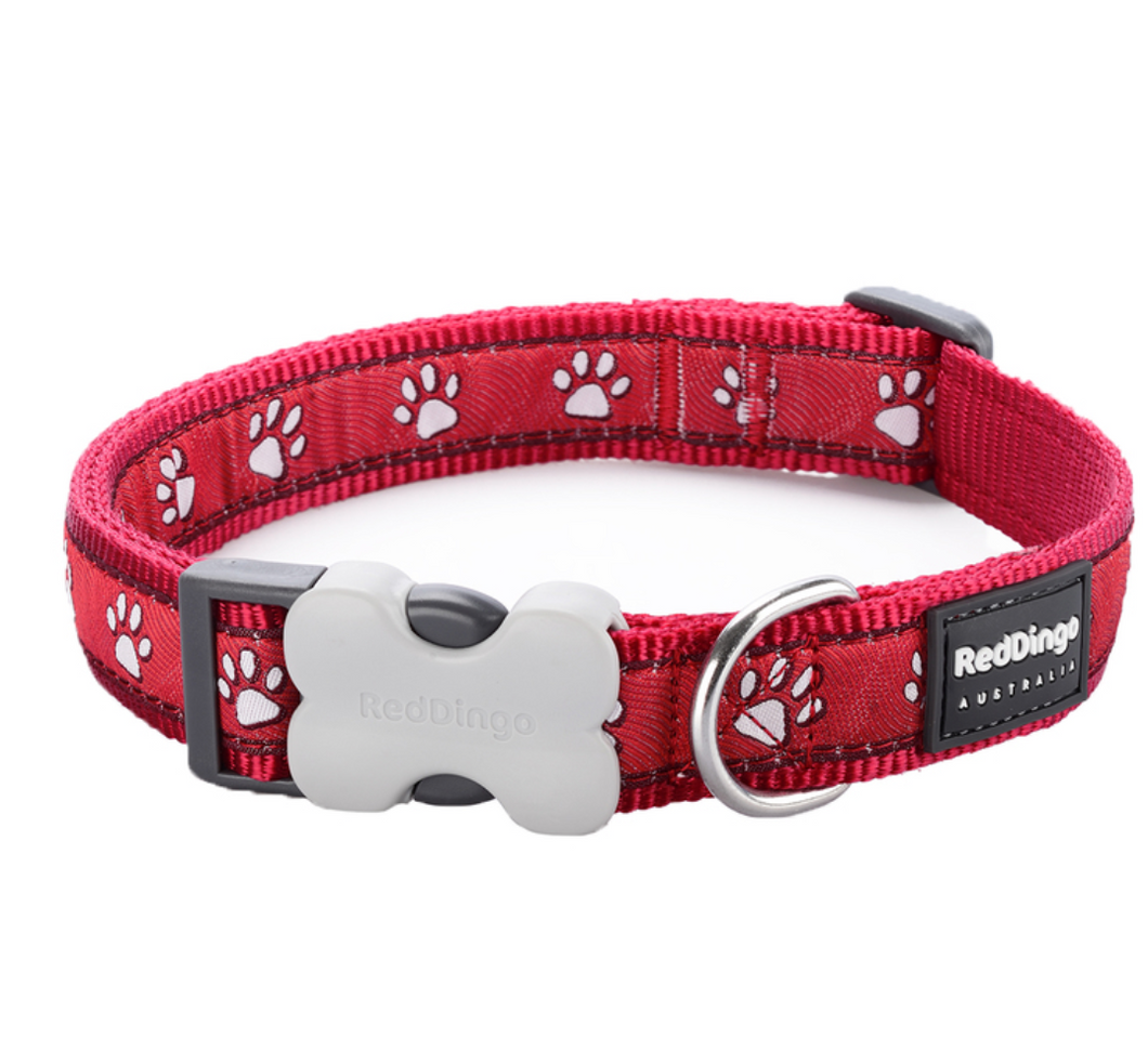 Desert Paw Dog Collar by Red Dingo