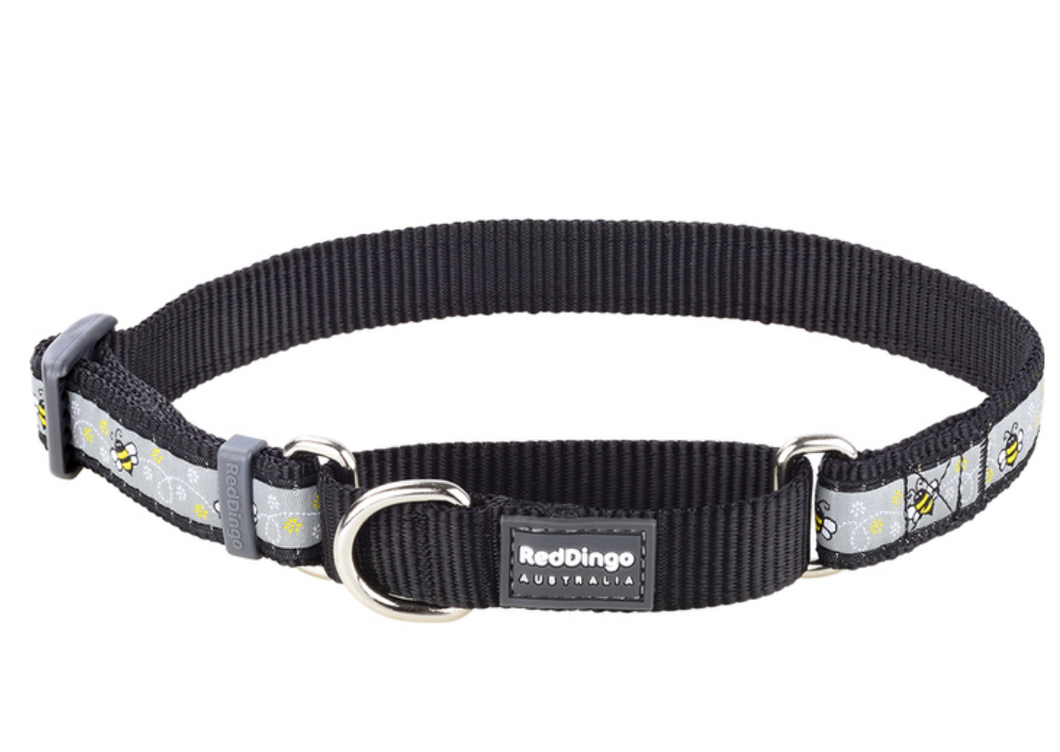 Red Dingo Bumble Bee Martingale Dog Collar: Black