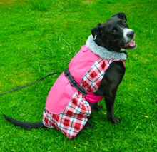 Load image into Gallery viewer, RETIRED: Alpine All-Weather Coat: Pink Plaid