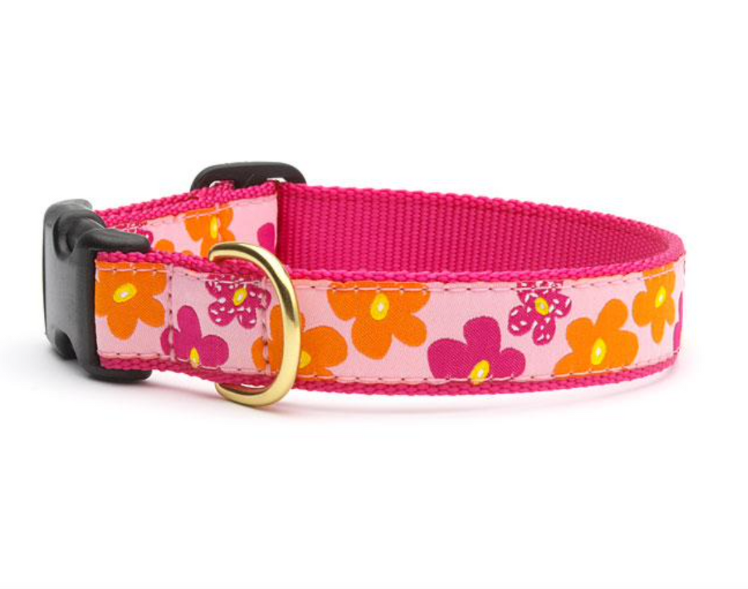 Retired: Flower Power Dog Collar