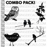 Birds Lovers Combo Pack