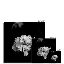 Load image into Gallery viewer, FSMONO-01 Fine Art Print