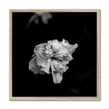 Load image into Gallery viewer, FSMONO-01 Framed Print