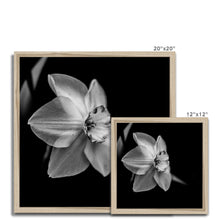 Load image into Gallery viewer, FSMONO-06 Framed Print