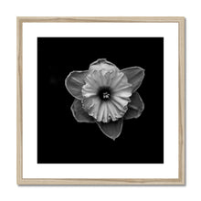 Load image into Gallery viewer, FSMONO-07 Framed & Mounted Print