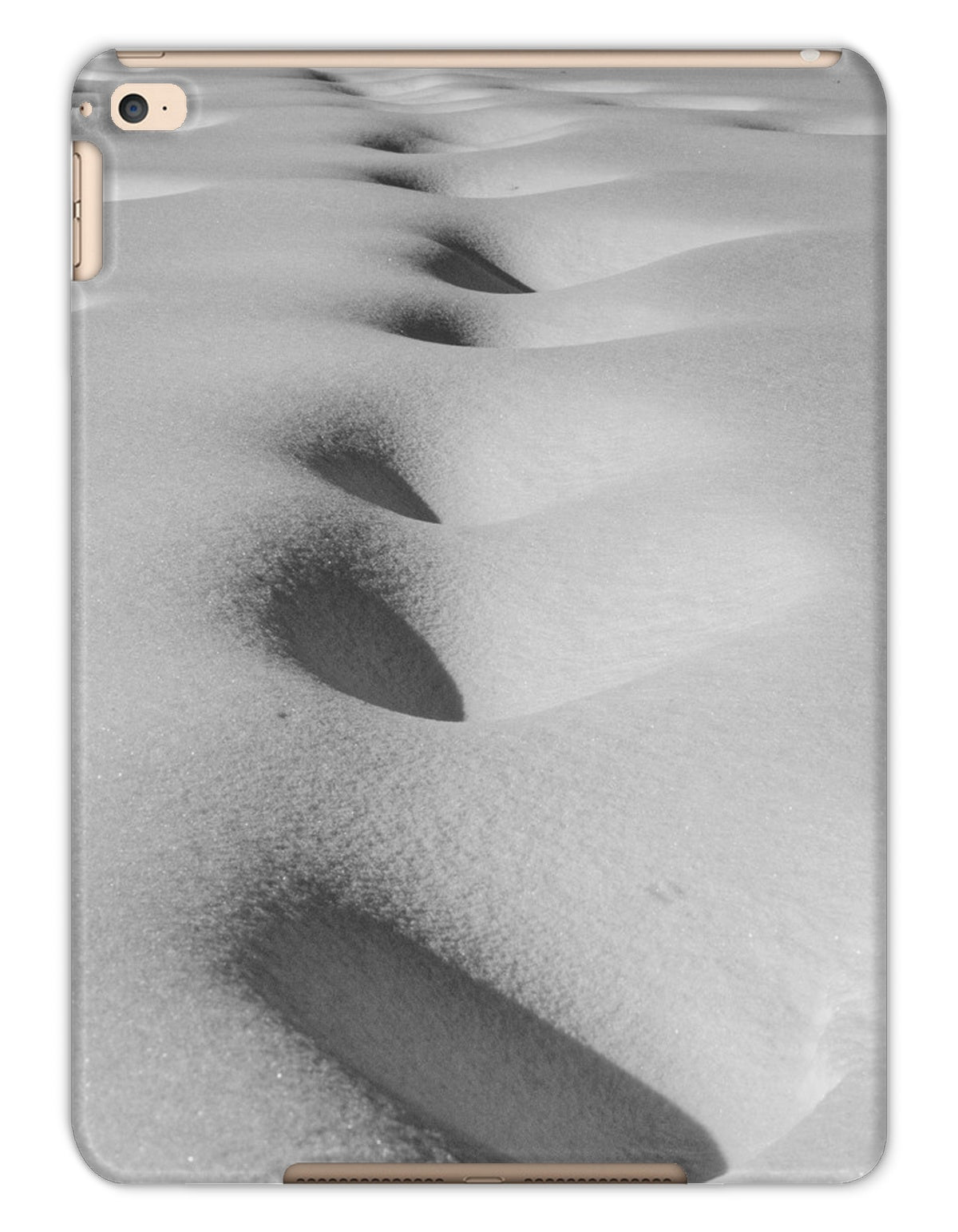 SnowScape Tablet Cases