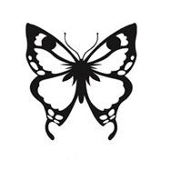2- Butterfly Engraving