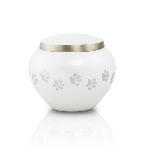 Pearl Extra Small Odyssey Pet Urns