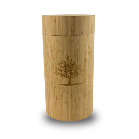 Biodegradable Cremation Urn Including Live Tree Sapling