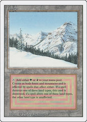 Taiga [Revised Edition] | Tier 1 Games
