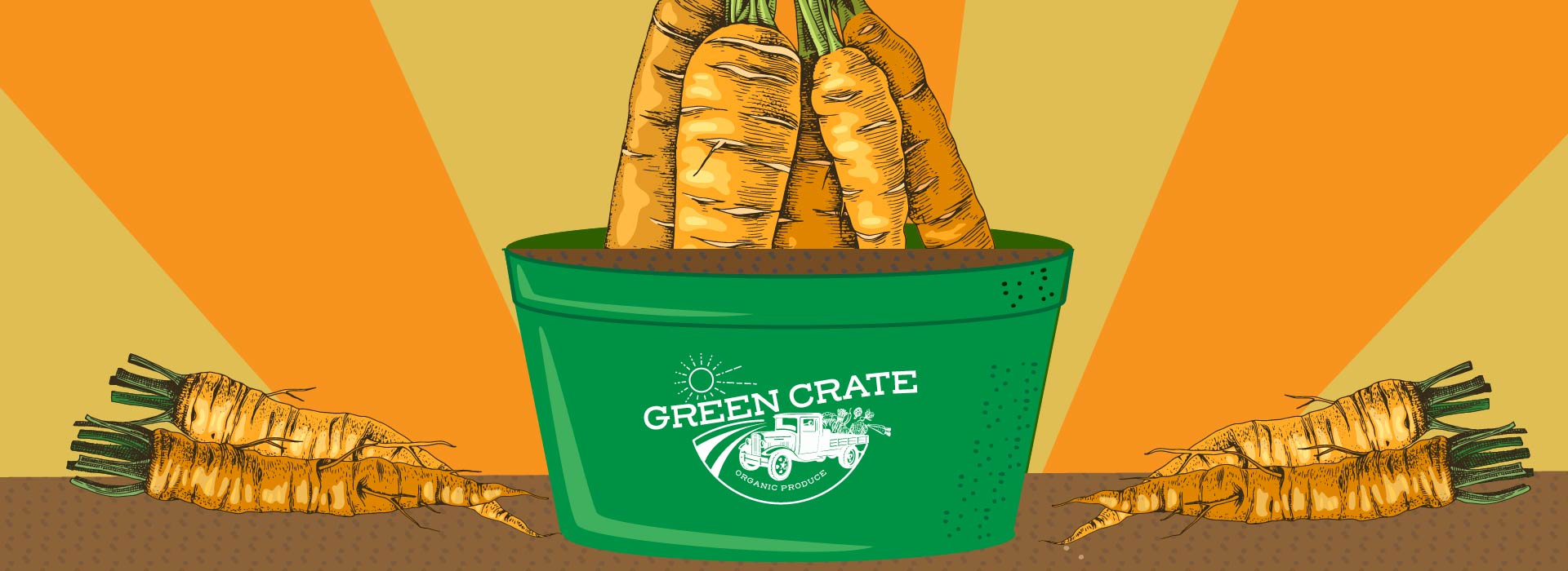 Grow Carrots in a Bucket at Home