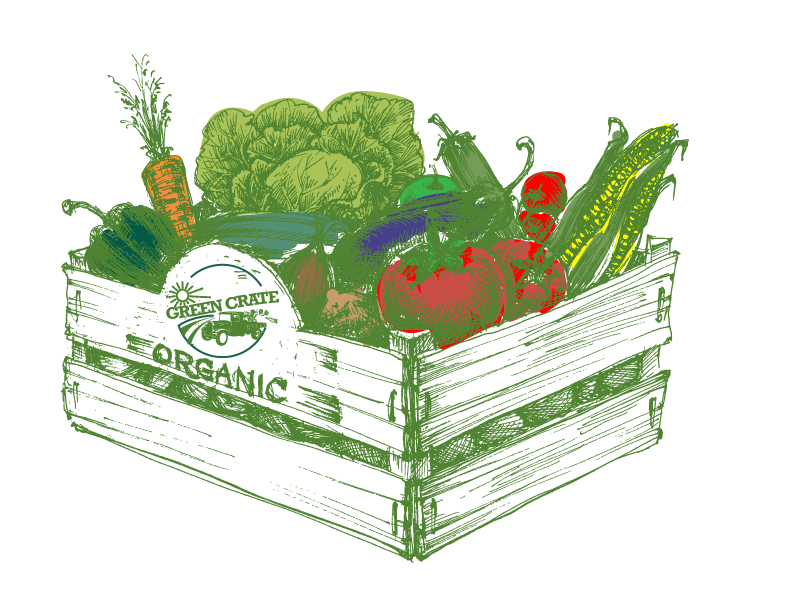 Fill your Green Crate with Organic Veggies that taste so good, your kids will be begging for more veggies, so nutritious you will feel amazing and so affordable you will never shop anywhere for produce again.