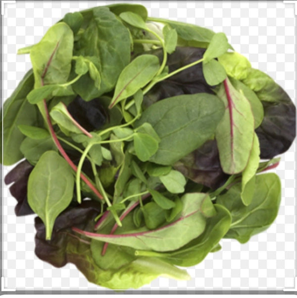 Mixed Salad Leaf 500g