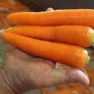 Washed Carrots (Scottish) 1 kg