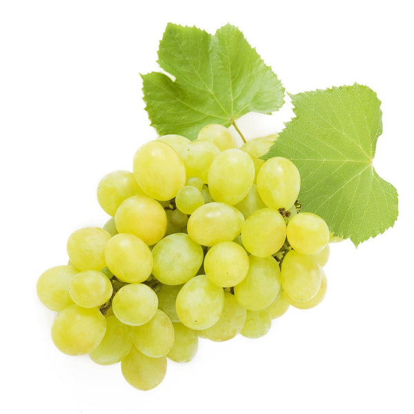 Seedless Grapes - Green