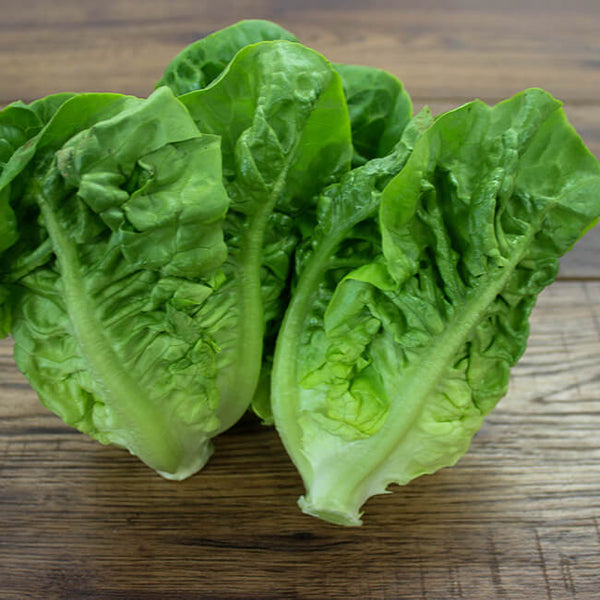 Baby gem lettuce bag