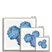 Load image into Gallery viewer, Art Print - Watercolour Blue Succulent Framed & Mounted Print