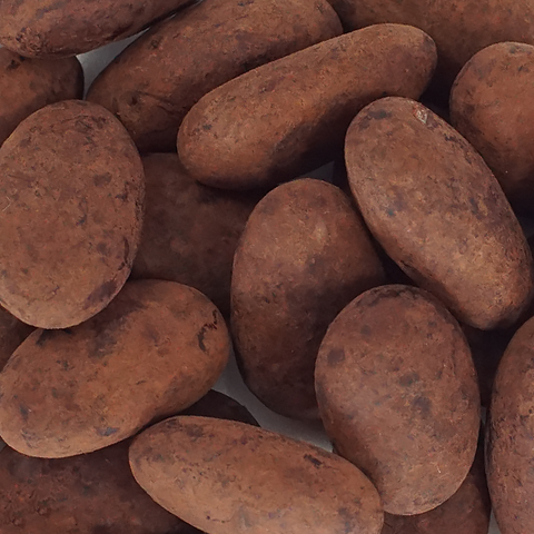 Cocoa Dusted Milk Chocolate Almonds