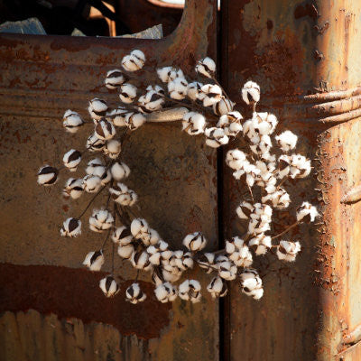 Southern Cotton Wreath