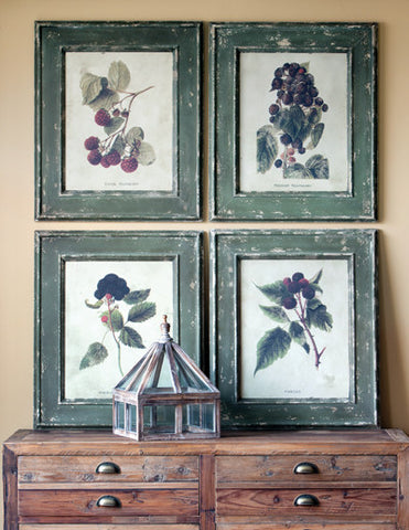 Framed Berry Prints