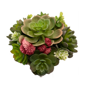 Succulence Cake Topper