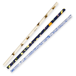6MM REGULAR ART SERIES BIOSTRAW