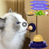 1 PC Healthy Cat Snacks Catnip Sugar Candy Licking Nutrition Gel Energy Ball Toy Increase Pet Suppliestoy Candy Fixed Cat TSLM2