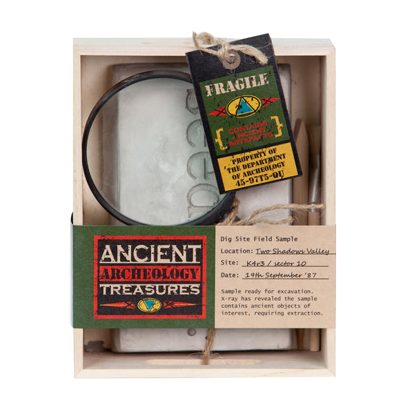 The Ancient Treasures Archaeology Kit