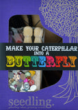 Make Your Caterpillar into a Butterfly!
