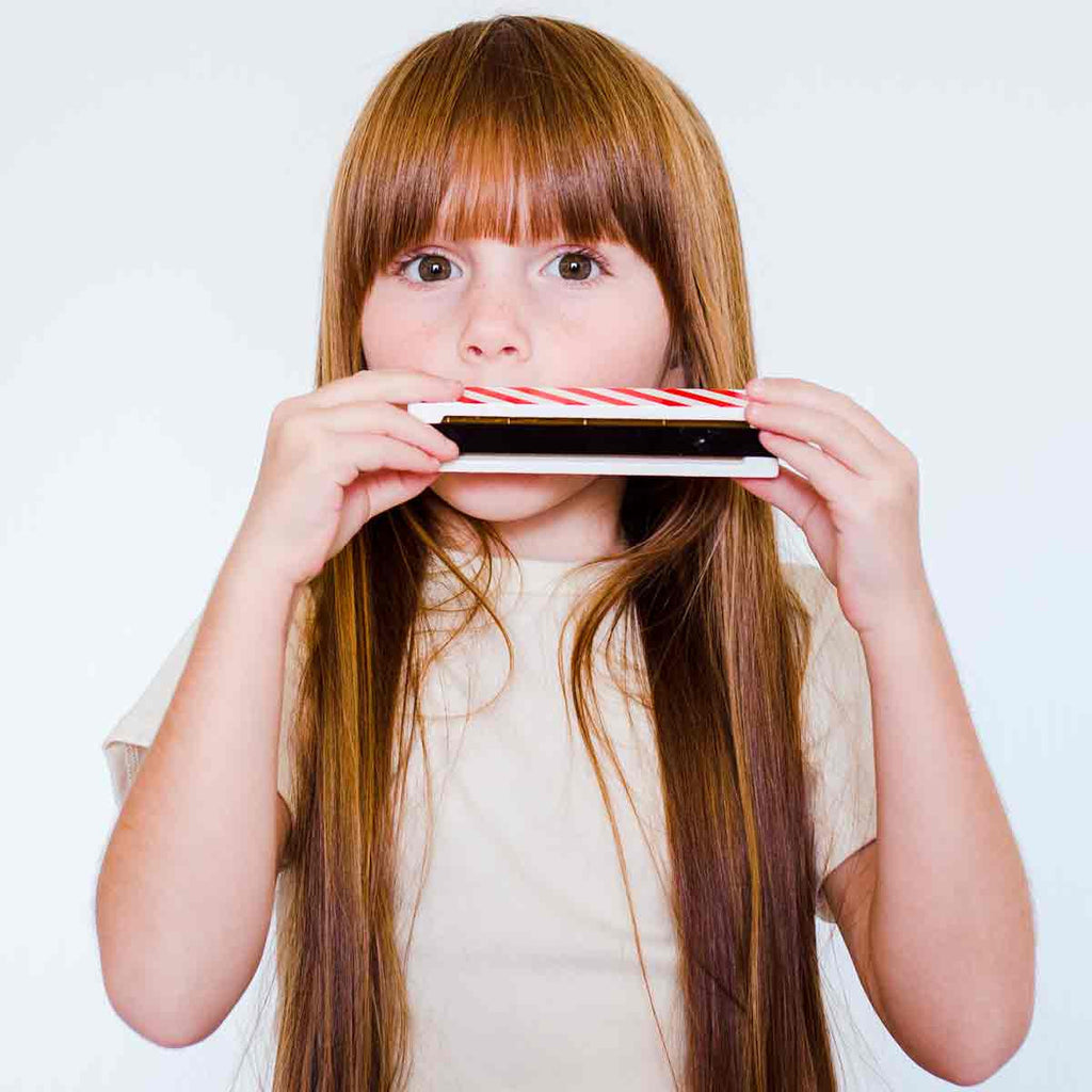 Harmonica - Ready to Play!