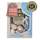 Kit Collection - Let's Rock! Geode Kit