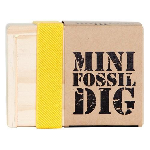 Kit Collection - Mini Fossil Dig