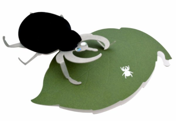 Pocket Money Collection - Beetle On A Leaf