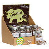 Pocket Money Collection - Dino Fossils In A Jar!