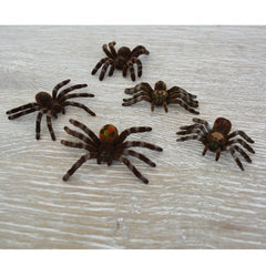 Furry, Creepy, Crawling Spiders