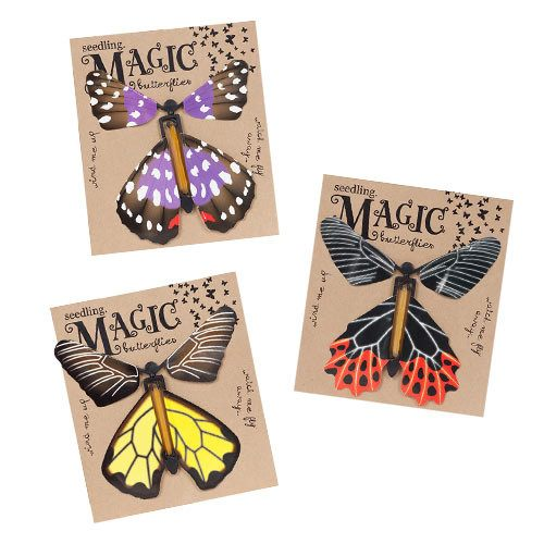 Pocket Money Collection - Magic Butterflies